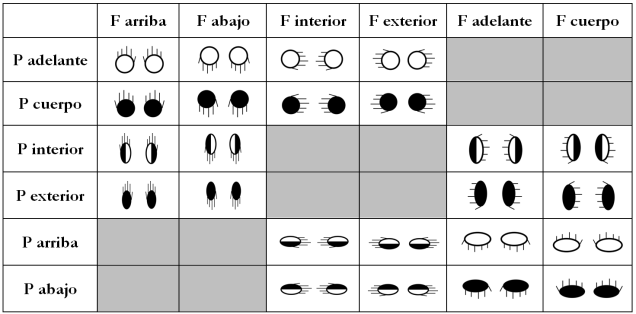 orientaciones chart